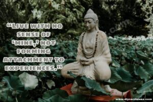 Buddha quote for life