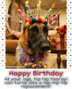Funny Birthday Quotes Friend