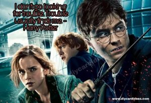 Harry Potter funny quote picture