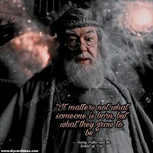 Harry Potter quotes about Dumbledores