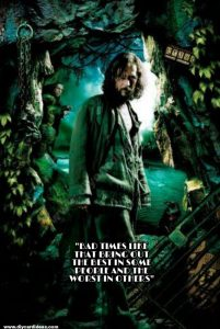 Harry Potter quotes about sirius blackss