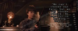 Harry Potter quotes life
